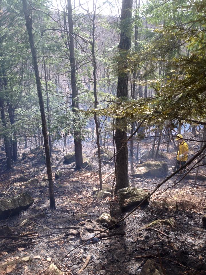 brush fire vermont