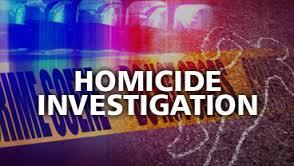homicide-investigation